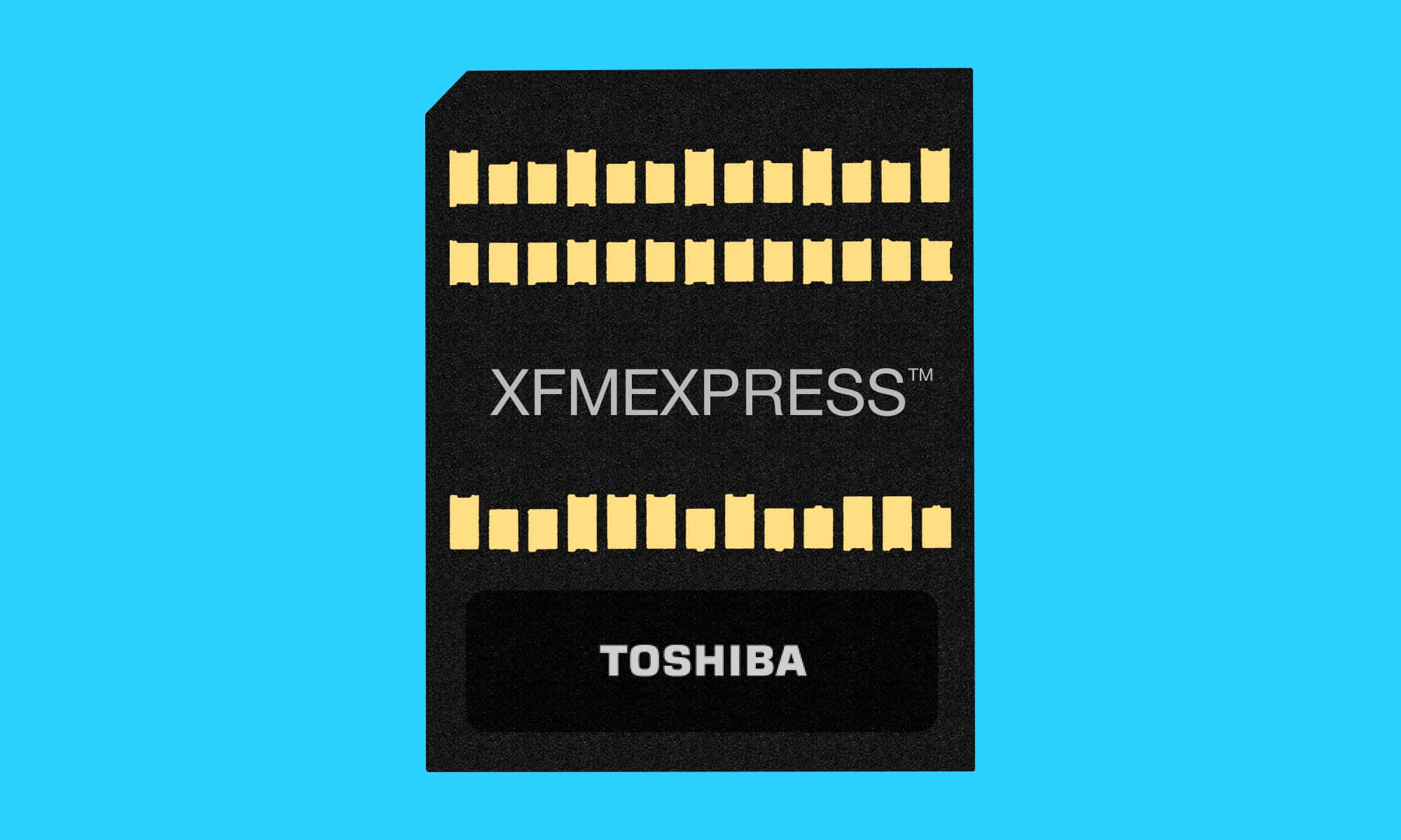XFMExpress