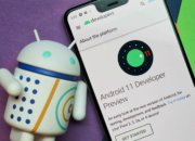 Google выпустила Android 11 Developer Preview 1